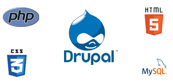 Dedicated Drupal developer