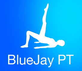 th_mob_bluejay
